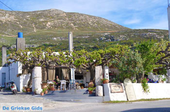 Taverna Mouries Skyros | Griekenland foto 1 - Foto van https://www.grieksegids.nl/fotos/skyros/normaal/skyros-grieksegids-221.jpg