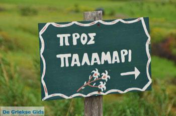 Palamari Skyros | Griekenland | De Griekse Gids foto 1 - Foto van De Griekse Gids