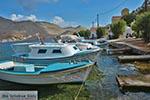 Pedi - Symi Dodecanese foto 7 - Foto van De Griekse Gids