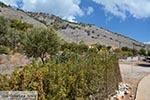 Marathounta Symi - Dodecanese foto 16 - Foto van De Griekse Gids