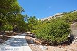 Marathounta Symi - Dodecanese foto 17 - Foto van De Griekse Gids