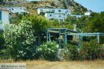 Galissas | Syros | Griekenland foto 3 - Foto van De Griekse Gids