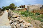 Sa Michalis | Noord Syros | Griekenland foto 15 - Foto van De Griekse Gids