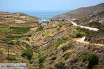 Noord Syros | Griekenland | De Griekse Gids foto 63 - Foto van De Griekse Gids