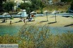 Posidonia | Syros | Griekenland nr 3 - Foto van De Griekse Gids
