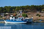Eiland Telendos - Griekse Gids Foto 29 - Foto van De Griekse Gids