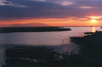 JustGreece.com Delta Evros | Griekenland | Foto 1 - Foto van Region of Eastern Macedonia and Thrace
