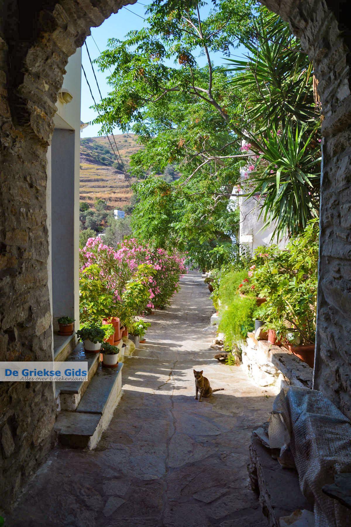foto Agapi Tinos   Griekenland   De Griekse Gids foto 36