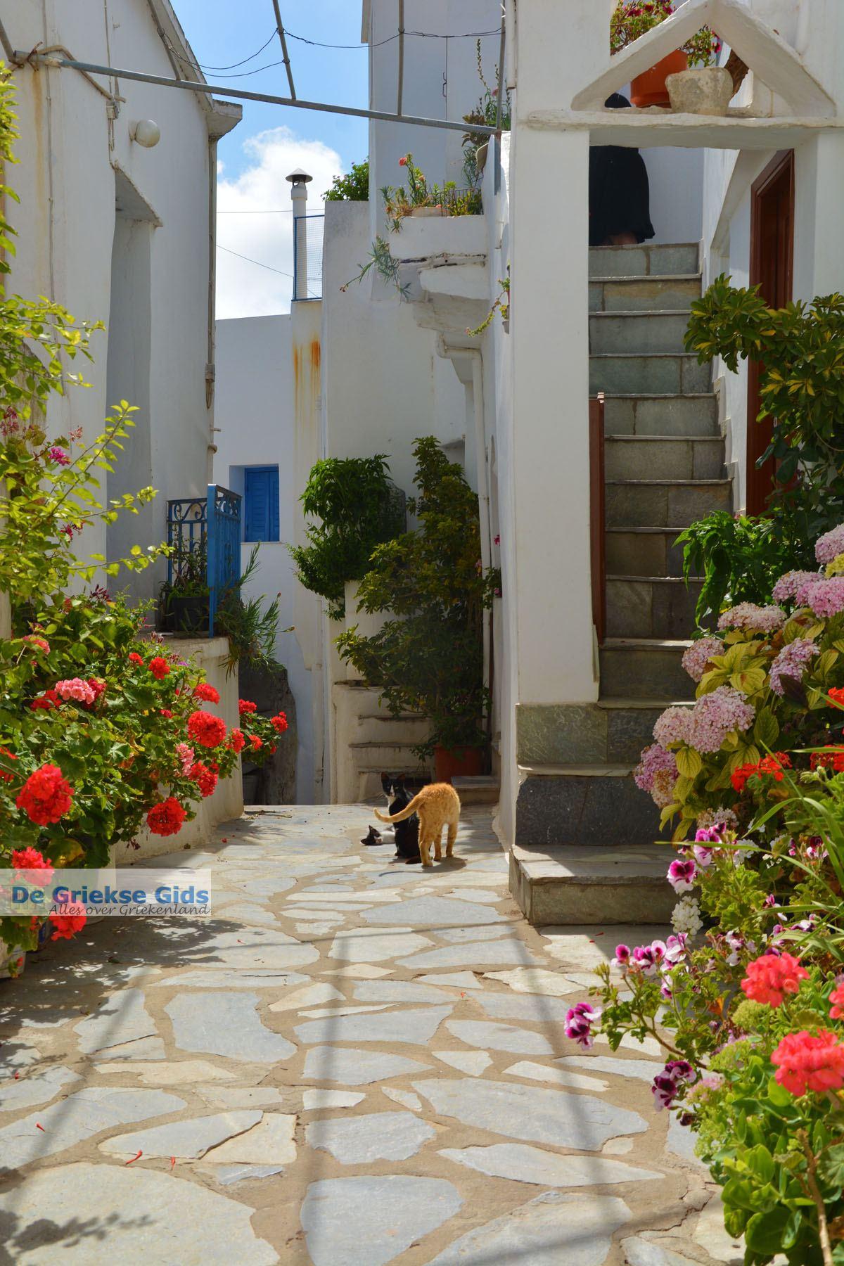foto Falatados bij Exomvourgo Tinos   Griekenland   Foto 23