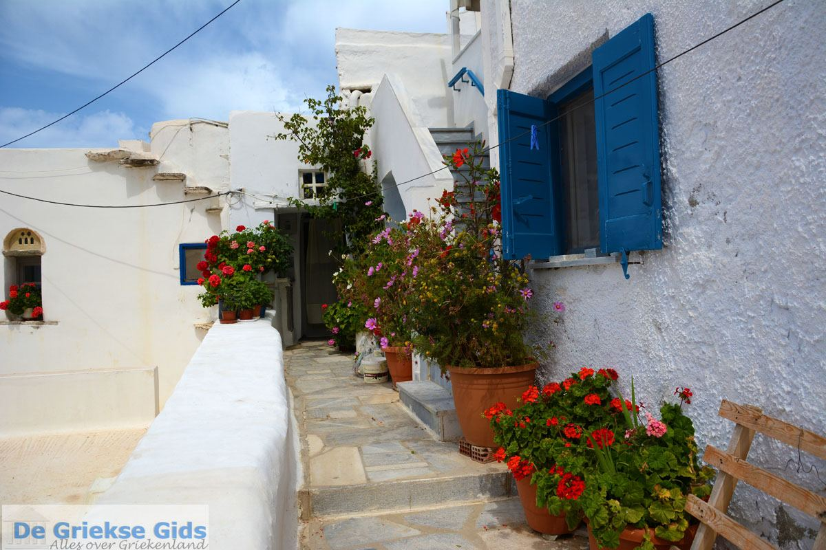 foto Kardiani Tinos | Griekenland | Foto 11
