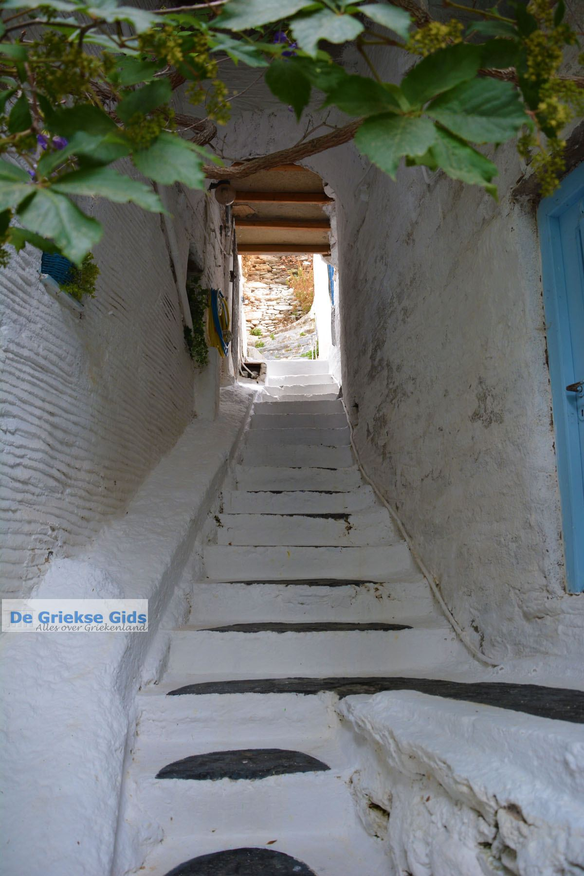 foto Kardiani Tinos | Griekenland | Foto 48