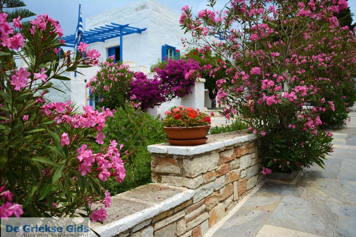 foto Pyrgos Tinos | Griekenland | Fotto 17