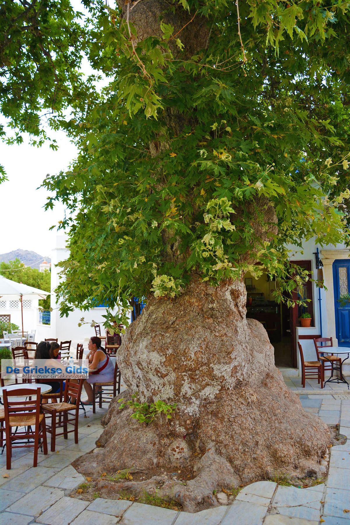 foto Pyrgos Tinos | Griekenland | Fotto 27