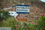 Aetofolia en Kalloni Tinos | Griekenland | Foto 5