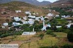 Karkados en Kalloni Tinos | Griekenland | Foto 3