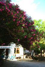 Agapi Tinos | Griekenland | De Griekse Gids foto 23 - Foto van De Griekse Gids