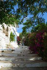Agapi Tinos | Griekenland | De Griekse Gids foto 24 - Foto van De Griekse Gids