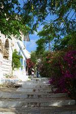 Agapi Tinos | Griekenland | De Griekse Gids foto 25 - Foto van De Griekse Gids