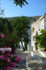 Agapi Tinos | Griekenland | De Griekse Gids foto 38 - Foto van De Griekse Gids