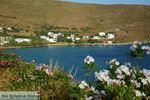 Agios Romanos Tinos | Griekenland | Foto 8 - Foto van De Griekse Gids