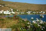 Agios Romanos Tinos | Griekenland | Foto 10 - Foto van De Griekse Gids