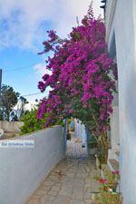 Arnados Tinos | Griekenland | Foto 9 - Foto van De Griekse Gids