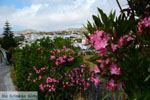 Falatados bij Exomvourgo Tinos   Griekenland   Foto 5 - Foto van De Griekse Gids