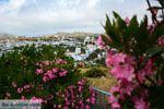 Falatados bij Exomvourgo Tinos | Griekenland | Foto 6 - Foto van De Griekse Gids