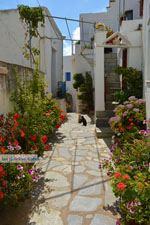 Falatados bij Exomvourgo Tinos | Griekenland | Foto 21 - Foto van De Griekse Gids