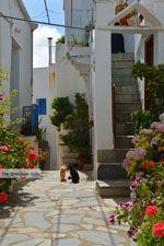 Falatados bij Exomvourgo Tinos   Griekenland   Foto 22 - Foto van De Griekse Gids