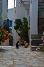 Falatados bij Exomvourgo Tinos | Griekenland | Foto 24 - Foto van De Griekse Gids