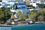 Strand Laouti bij Aghios Sostis Tinos | Foto 3 - Foto van De Griekse Gids