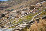 Noordoost Tinos | Griekenland | Foto 8 - Foto van De Griekse Gids