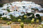 Pyrgos Tinos | Griekenland | Fotto 3 - Foto van De Griekse Gids