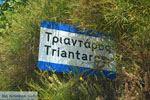 Triantaros bij Dyo Choria Tinos | Griekenland | Foto 4 - Foto van De Griekse Gids