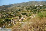 Volax | Volakas Tinos | Griekenland foto 4 - Foto van De Griekse Gids