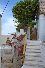 Ysternia Tinos | Isternia | Griekenland foto 32 - Foto van De Griekse Gids