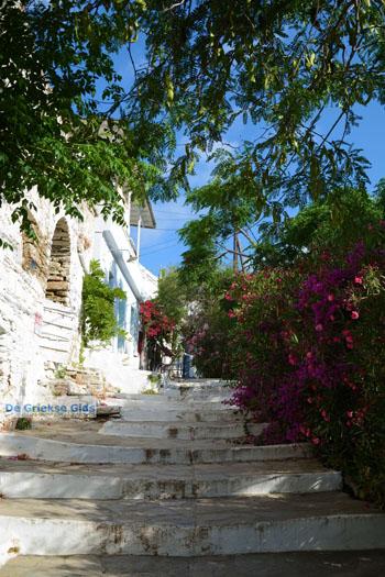 Agapi Tinos   Griekenland   De Griekse Gids foto 24 - Foto van De Griekse Gids