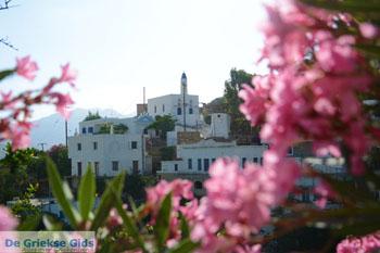 Agapi Tinos | Griekenland | De Griekse Gids foto 29 - Foto van De Griekse Gids
