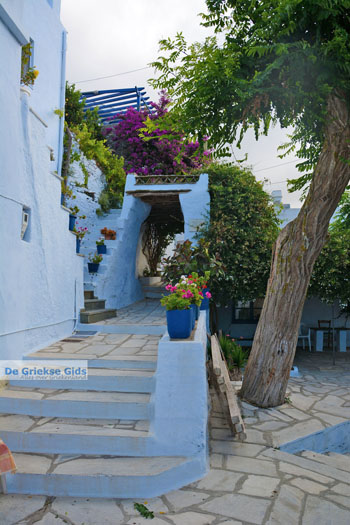 Arnados Tinos | Griekenland | Foto 4 - Foto van De Griekse Gids