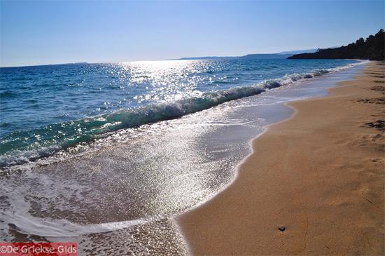 De Goudgele stranden van Lassi