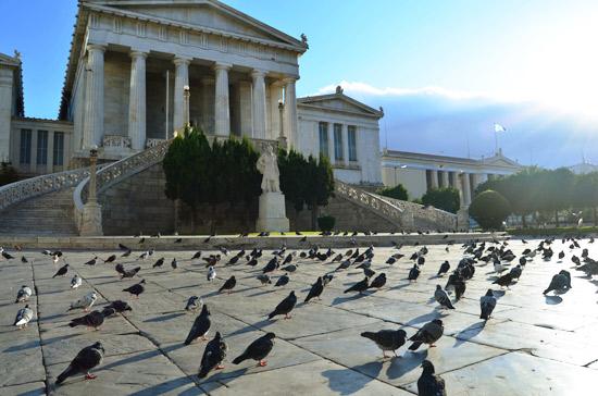 Athene - Foto Marleen Veldhorst