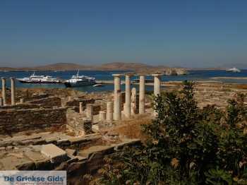 Delos - De Griekse Gids - Foto van Mariet Hoeve