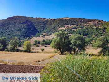 Kalavrita (Achaia) - Uitzicht uit het treintje dat van Diakofto naar Kalavrita rijdt. - Foto van Theo Mocking