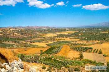 Mesara - Messara vlakte Kreta - De Griekse Gids - Foto van De Griekse Gids