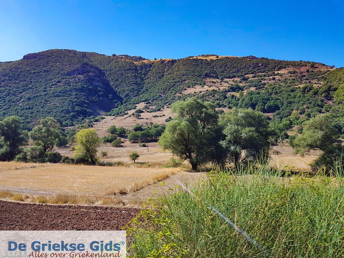 foto Kalavrita (Achaia) - Uitzicht uit het treintje dat van Diakofto naar Kalavrita rijdt.