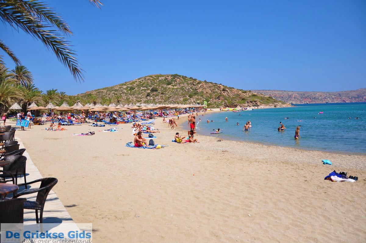 foto Vai Kreta | Lassithi Kreta | De Griekse Gids foto 8