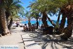 Vai Kreta | Lassithi Kreta | De Griekse Gids foto 6 - Foto van De Griekse Gids