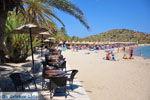 Vai Kreta | Lassithi Kreta | De Griekse Gids foto 7 - Foto van De Griekse Gids