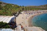 Vai Kreta | Lassithi Kreta | De Griekse Gids foto 13 - Foto van De Griekse Gids